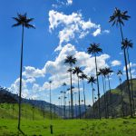 PHOTO ESSAY: 5 Natural Wonders in Colombia