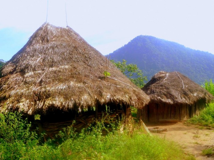 Traditional Kogi houses