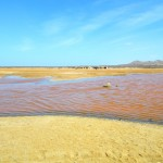 La Guajira Chronicles: 5 Things I Didn't Know about La Guajira