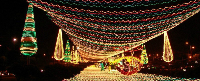 Colombian Christmas Lights