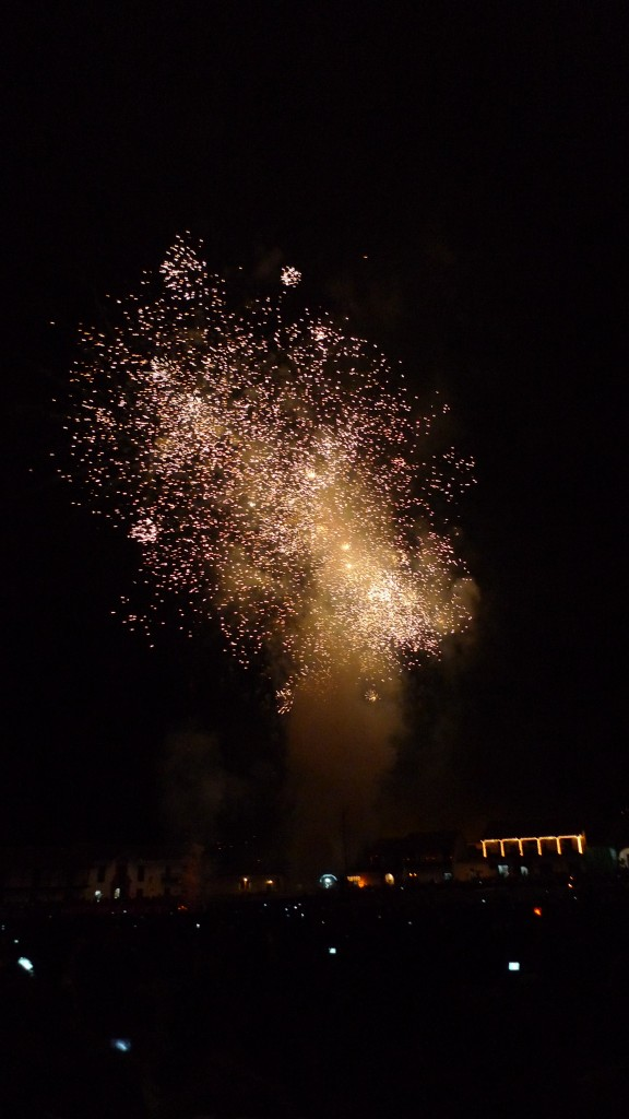 Fireworks light up in the sky
