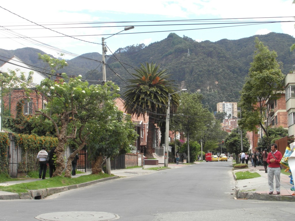 No cars nearby in leafy Chapinero