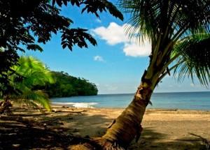 gorgona island, Colombian Pacific