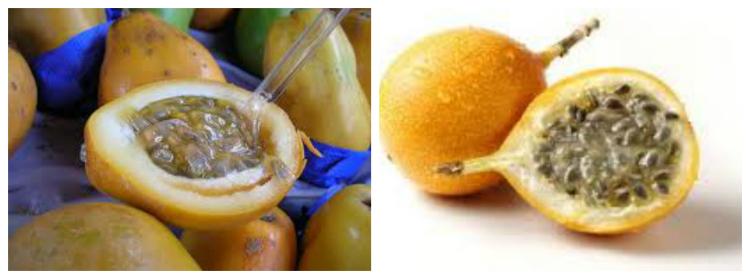 passionfruit grenadilla