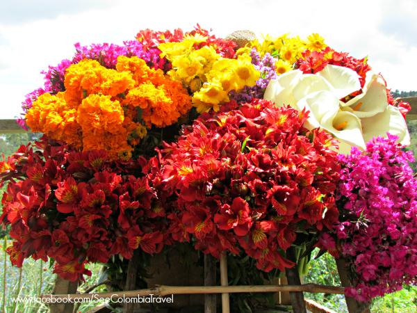 Flower display for Medellin's Feria de las Flores