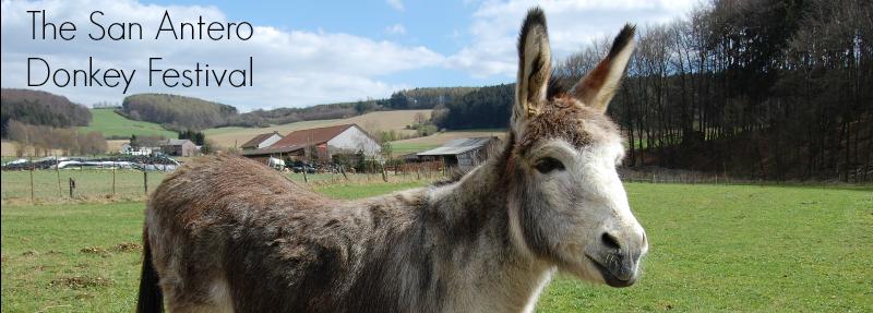 San Antero Donkey Festival