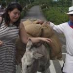 10 Cosas que extraño de Colombia