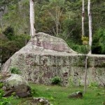Coffee Tour & Indian Rock Art with Andes Ecotours