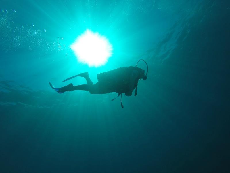 buceo en famiia Cancun