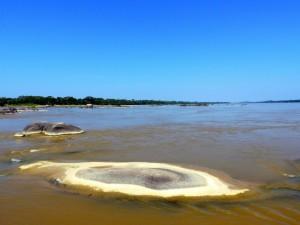 Estrella Fluvial del Sur Atabapo River