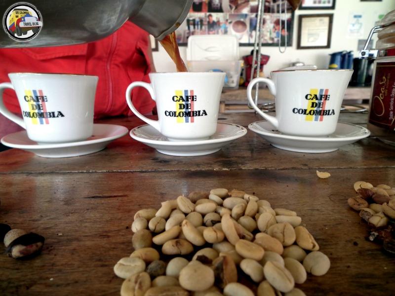 el ocaso coffee tour salento colombia