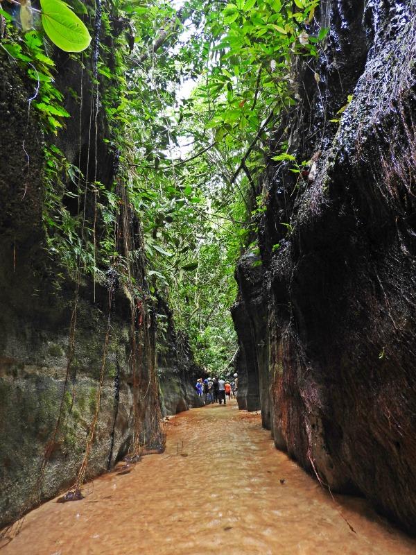 Reserva Natural y Ecoturística Las Dalias caqueta