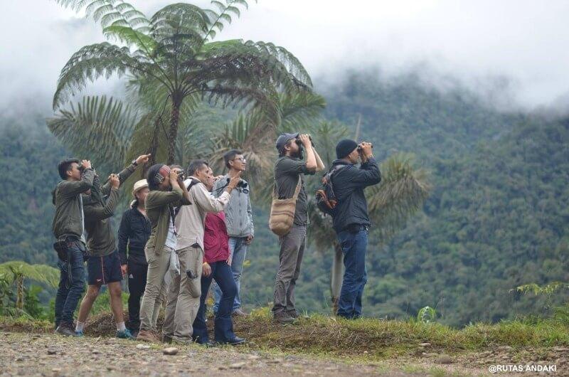 Observación de aves en el Mirador de los Tucanes