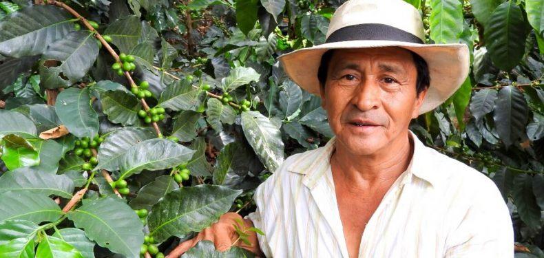 eje-cafetero-de-colombia-5-razones-por-las-que-tienes-que-visitar-buenavista-y-pijao