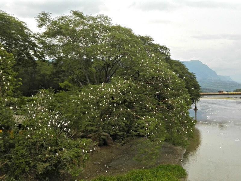 La Pintada Antioquia